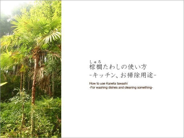 棕櫚たわしの使い方